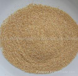 Garlic granules 4