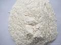 Garlic powder 4