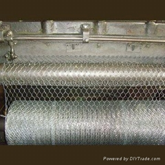 Hexagonal wire mesh Chicken Mesh