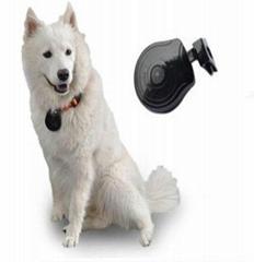 USB 2.0 Mini LCD Digital Pet Eye View Camera Dog Cat Collar Video Camera/ DVR