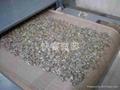 瓜子堅果微波烘焙設備 1