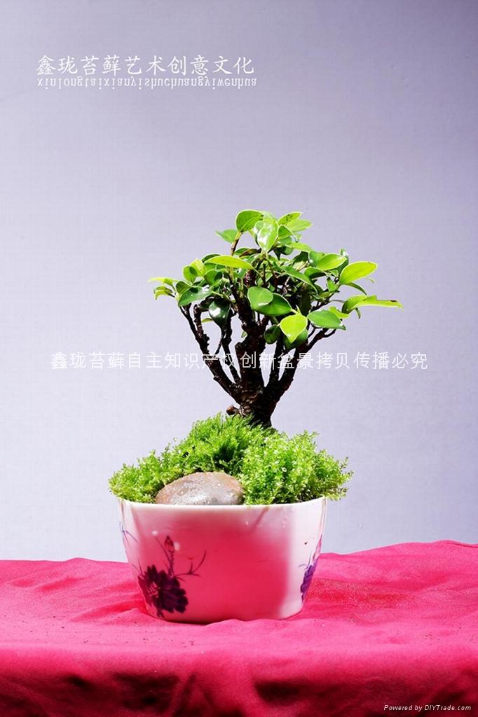 景德鎮小方型骨瓷杯 1