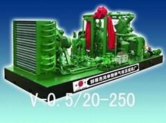 V-0.5/20-250天然氣壓縮機