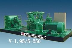 V-1.95/5-250天然氣壓縮機