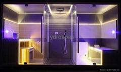 Multi-functional Sauna / Steam / Shower