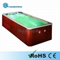 Swim Pool Spa/ Swimming Pool/ Pool Spa HY316