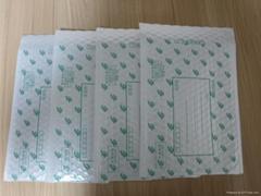 Postal Express envelope bubble bag