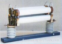 温州   :RN1-10,RN1-35KV高压熔断器 1