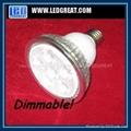 Dimmable LED PAR light PAR20 PAR30 PAR38