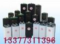 合力电动叉车电瓶蓄电池组 2