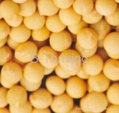 Phosphatidylserine  50%