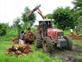 PALM OIL FROM