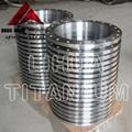 ASTM B381 Standard Gr2 Titanium Flange ANSI B16.5 2