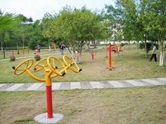 湖北大冶青龍山公園綠化