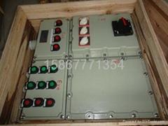 BXMD-系列防爆配电箱 IIB IIC