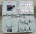 供應防爆檢修電源插座箱IIB IIC 5