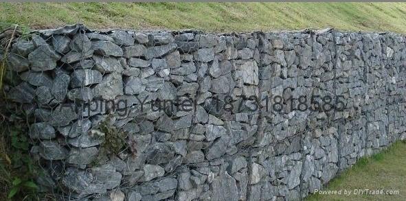 电焊石笼网  75x75mm