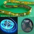 Waterproof SMD5050 RGB Epistar strip