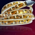 SMD3528 300leds/5M Waterproof led