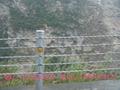景区名胜古迹常用缆索护栏 1