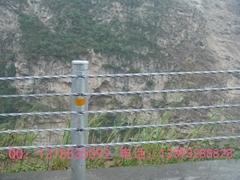景区名胜古迹常用缆索护栏