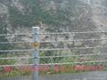 公路A型鋼索護欄 2