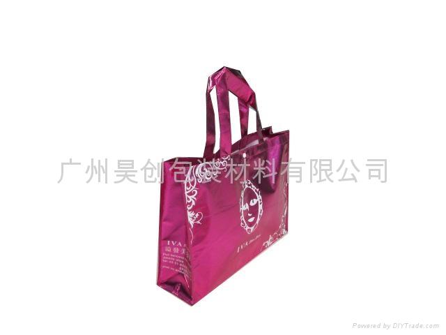 鍍鋁膜無紡布環保購物袋 2