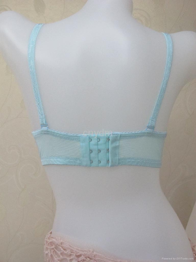 Yidaimeng 2011 New Design Lace Bra A2018 China Bra