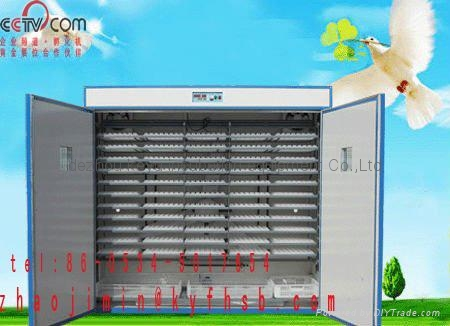 chicken egg incubator  2