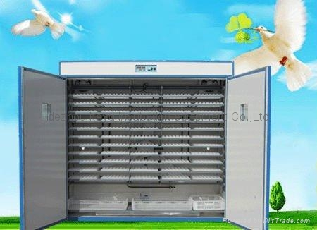 chicken egg incubator  3