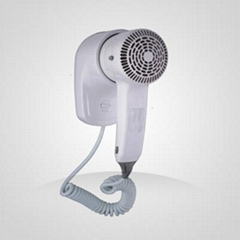 hair & skin dryer