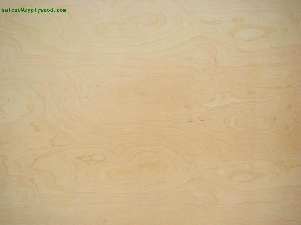brich plywood