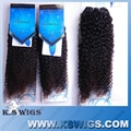 100% Virgin Raw Remy Hair Weft/Extensions