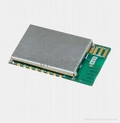 TT2530-L low power module