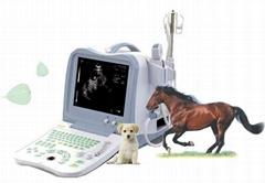 獸用超聲診斷儀(便攜式)(BW530V)