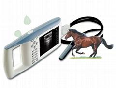 獸用全數字超聲診斷儀(BW520V)
