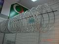 监狱护栏 5