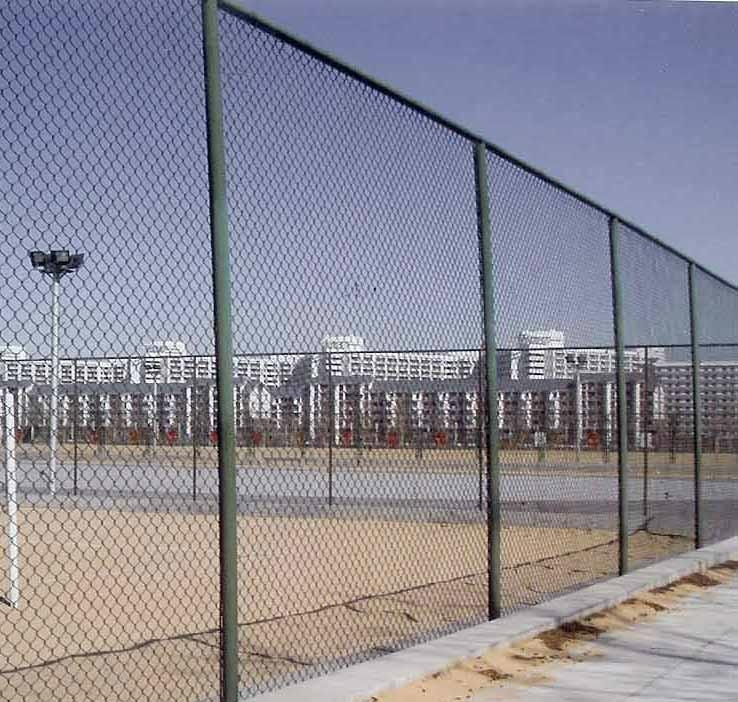 中国德泓DH-002体育场护栏 2