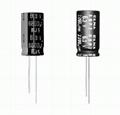 Speaker Type Electrolytic Capacitor 2