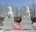 汉白玉石雕狮子 1