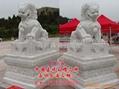 汉白玉石雕狮子 3