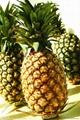 供应大量菠萝