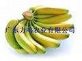 供应大量香蕉