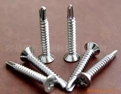 不鏽鋼鑽尾螺絲