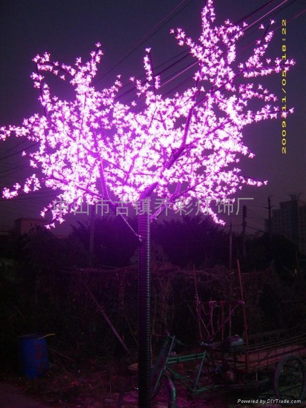 樱花树 1