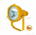 BOG-04 explosion proof Projecting Lamp