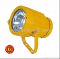 BOG-9500 Explosion-proof Spot Light