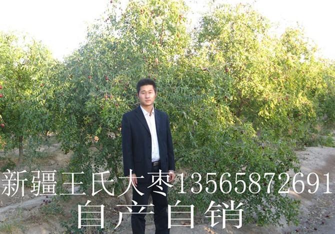 新疆若羌红枣 3