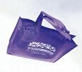 廣東展會袋 廣東購物袋 廣東禮品袋 1