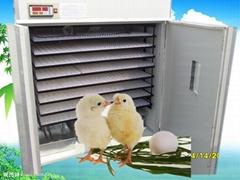Hot selling  chicken egg incubator